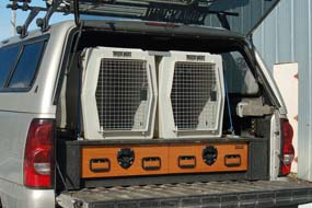Dog, Vault, Pet, Carrier, K-9, Cage